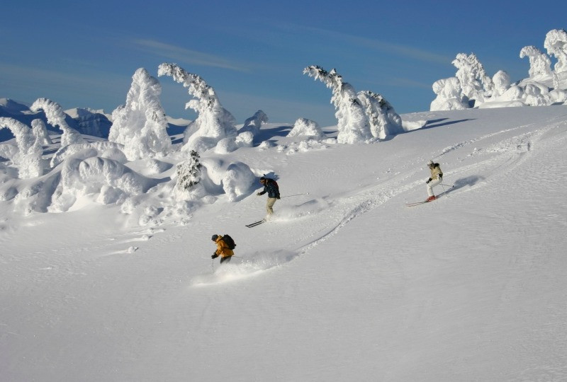 Skiing Siegi Tours